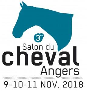 BLOC_MARQUE_2eSALON CHEVAL_2017