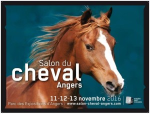 angers-saloncheval