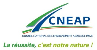 cneap_slogan