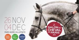 salon du cheval 2016.jpg