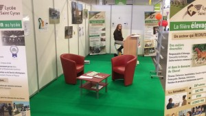 FET STAND