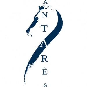 logo-antares-web